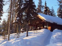 Vakantiehuisje in Lapland